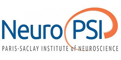 Neurosciences Paris Saclay institute Logo